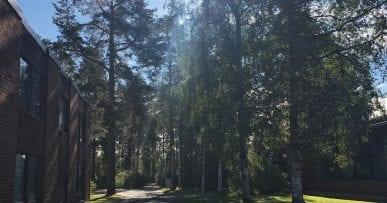 HSP Gathering, Oulu