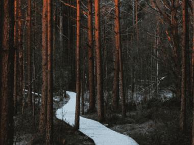 Hopefulness and Resilience